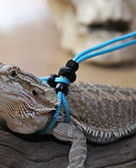 Adjustable-Reptile-LeashTM-Harness-Great-for-Reptiles-or-Small-Pets-100-Adjustable-One-Size-Fits-Most-0