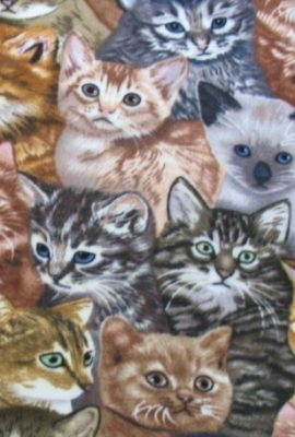 Allover-Kitten-Fleece-Throw-Blanket-0