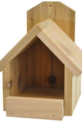 Backyard-Boys-Woodworking-BBW81-Cardinal-Nest-Box-0