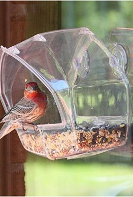 Birdscapes-Clear-Window-Feeder-0