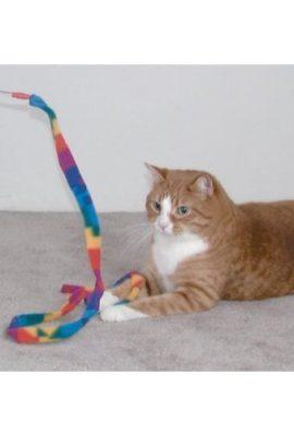 Cat-Dancer-Cat-Charmer-WandTeaser-Cat-Kitten-Toy-0