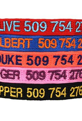 Custom-Embroidered-Cat-Id-Collars-with-Breakaway-Safety-Release-Buckle-Personalized-Kitty-Collars-with-Pet-Name-and-Phone-number-Adjustable-0