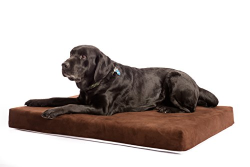 Best Washable Large Dog Bed