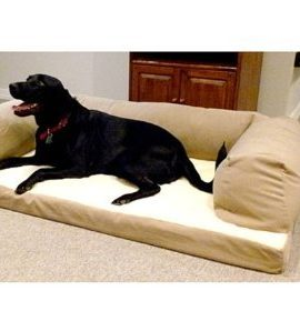 Dog-Bed-and-Couch-Extra-large-Tan-Baxter-Orthopedic-foam-Oversized-luxurious-comfort-guaranteed-0