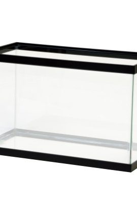 Fish-Aquatic-Supplies-Black-Tank-0