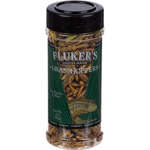 Flukers-Freeze-Dried-Grasshoppers-0