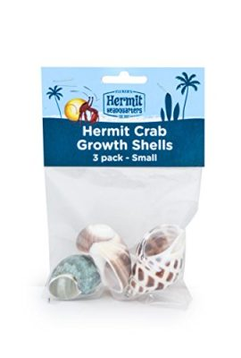 Flukers-Hermit-Crab-Growth-Shells-Small-3-Pack-0