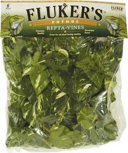 Flukers-Repta-Vines-Pothos-0