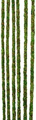 Galapagos-Mossy-Terrarium-Sticks-6-Pack-18-0