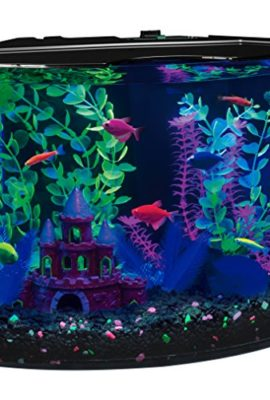 GloFish-29045-Aquarium-Kit-with-Blue-LED-light-5-Gallon-0
