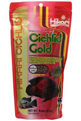 Hikari-88-Ounce-Cichlid-Gold-Floating-Pellets-for-Pets-Medium-0
