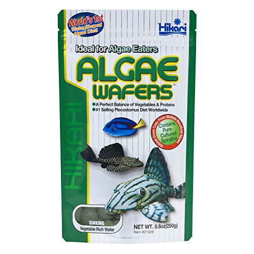 Hikari-Tropical-Algae-Wafers-for-Bottom-Feeding-Herbivorous-Fish-Food-0