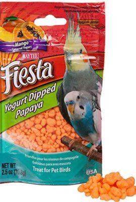 Kaytee-Fiesta-Mango-Flavored-Yogured-Dipped-Papaya-Bird-Treat-0