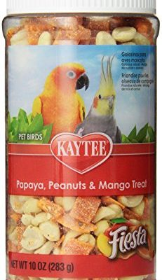 Kaytee-Fiesta-Papaya-Peanut-and-Mango-Treat-for-All-Birds-10-Ounce-Jar-0