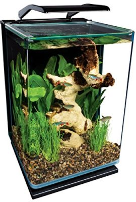 Marineland-ML90609-Portrait-Aquarium-Kit-5-Gallon-0