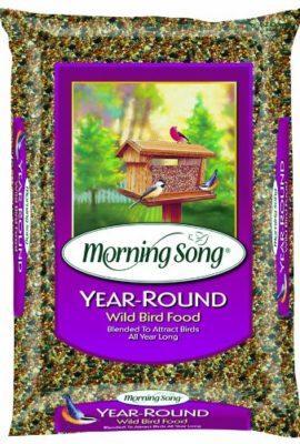 Morning-Song-Year-Round-Wild-Bird-Food-0