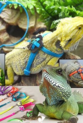 NO1-Adjustable-Reptile-Lizard-Harness-Leash-Pet-Collar-Traction-Rope-Blue-0