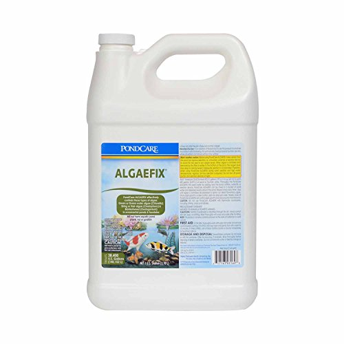 Pondcare algaefix algae control amazing animal posts for Koi pond algae control