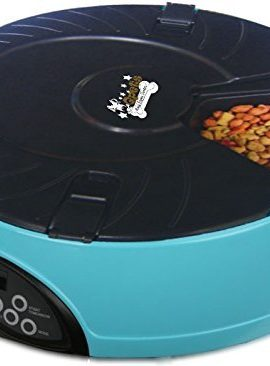 Qpets-6-Meal-Automatic-Pet-Feeder-0