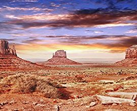 Reptile-Habitat-Terrarium-Background-Cool-Desert-Sky-18-Tall-X-36-Wide-0