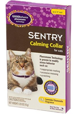 Sentry-Calming-Collar-for-Cats-0