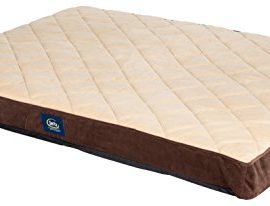 Serta-Orthopedic-Quilted-Pillowtop-Dog-Bed-X-Large-Brown-0