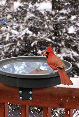 Songbird-Essentials-SE995-Songbird-Spa-0