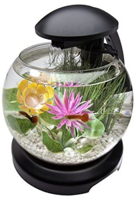 Tetra-18-Gallon-Waterfall-Globe-Aquarium-Kit-0