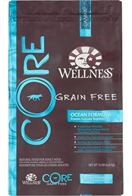 Wellness-CORE-Natural-Grain-Free-Dry-Dog-Food-0
