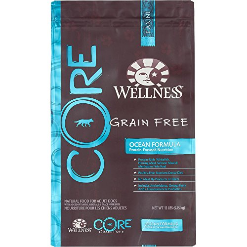 Wellness Core Natural Grain Free Dry Dog Food Amazing