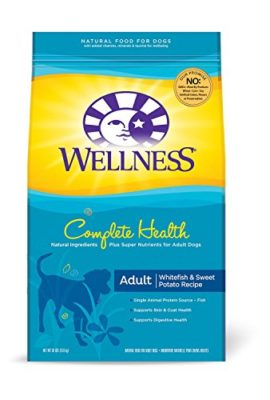 Wellness-Complete-Health-Natural-Dry-Dog-Food-0