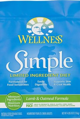Wellness-Simple-Natural-Limited-Ingredient-Dry-Dog-Food-0
