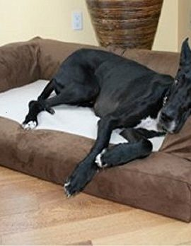 XXL-Dog-Bed-Orthopedic-Foam-Sofa-Couch-Extra-Large-Size-Great-Dane-Chocolate-by-Hidden-Valley-0