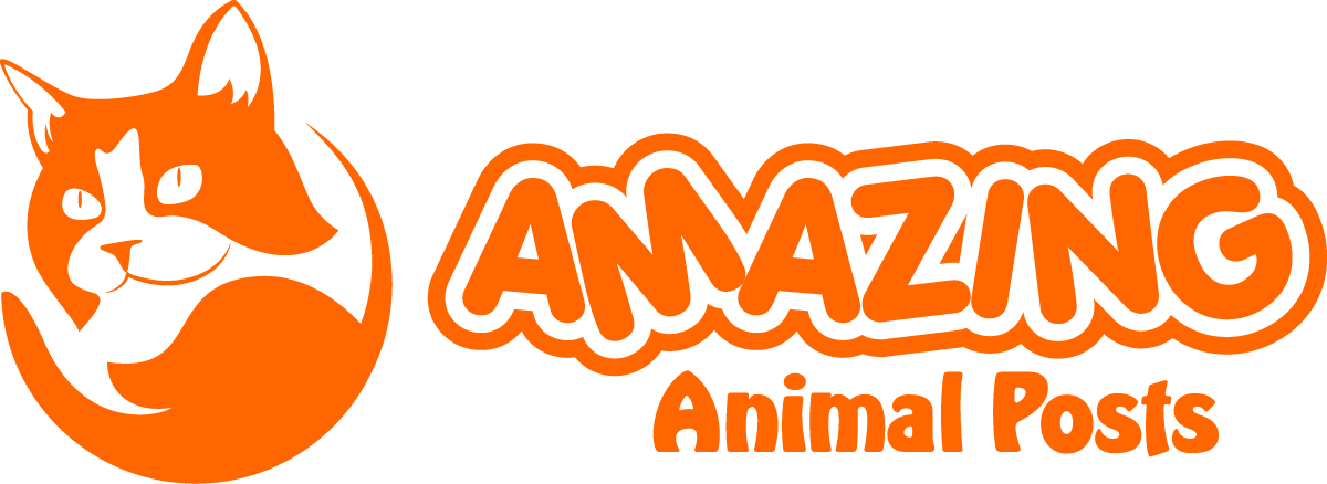 Amazing Animal Posts